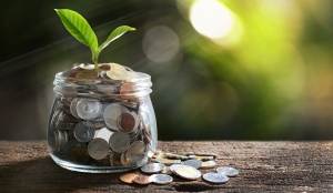 פתרונות אפקטיביים - בחינת כיסוי ביטוח