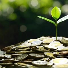 בקרת שכר – מה חשוב לדעת?